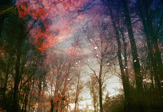 Magical-Double-Exposure-in-The-Forest-12
