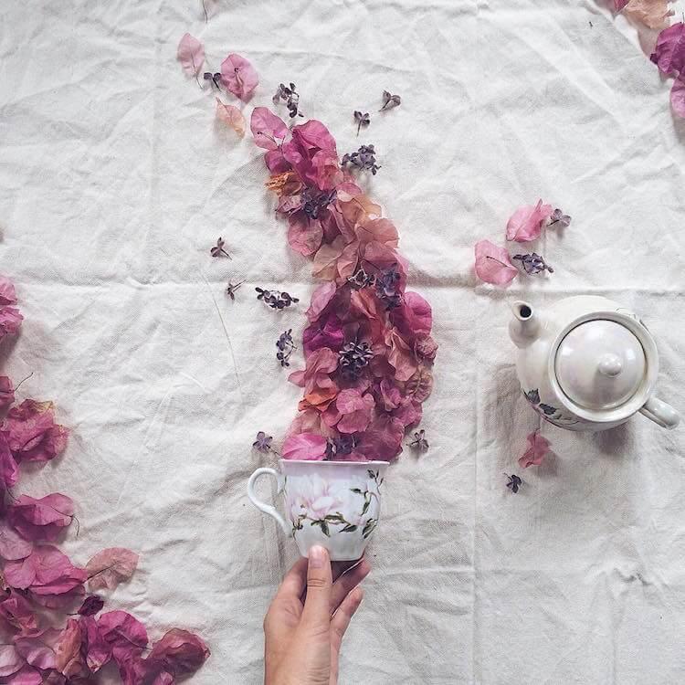 俄羅斯花卉攝影
