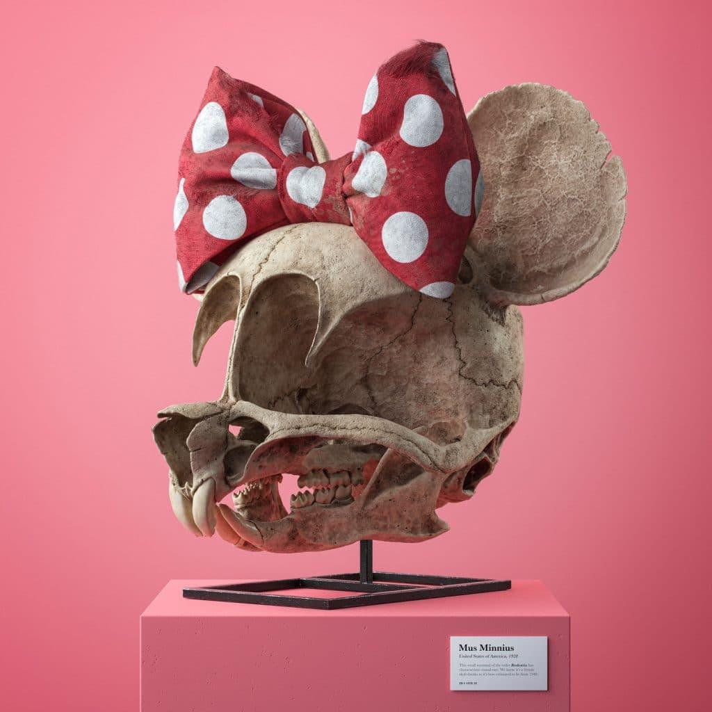 化石,卡通,繪圖軟體,3D繪圖,藝術,城市美學新態度