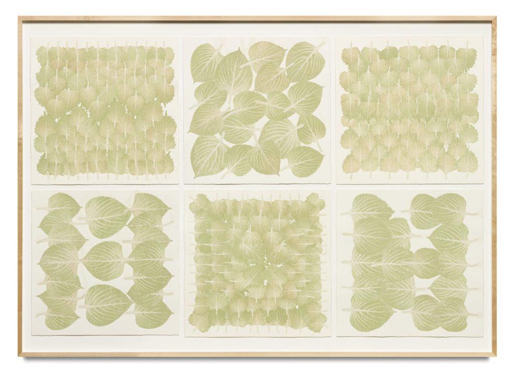 巴塞爾藝術展,Art Basel,藝術繪畫, Haegue Yang, Edibles Sextet – NTUC Finest, Freshmart Singapore, Perilla Leaves, each 50 g; Meidi-Ya, Unknown, Shiso, each 50 g, 2019, STPI Gallery
