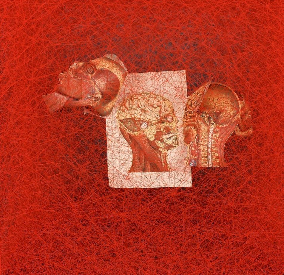 日本編織藝術家,鹽田千春,塩田千春,Chiharu Shiota,巨型編織,巴黎藝廊Galerie Templon,內在宇宙,Inner Universe