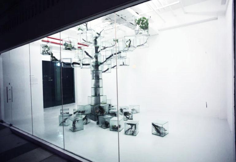 日本藝術家栗林隆,Takashi Kuribayashi,裝置藝術,自然主義