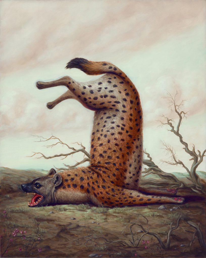 超現實體操動物