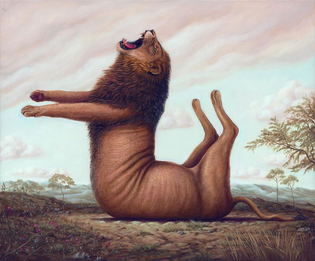 超現實 體操動物